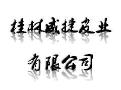 桂林威捷皮业有限公司招聘信息