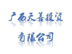 广西天善投资有限公司LOGO